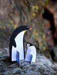 Pop out Pinguine 3D  DIY